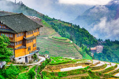 Chinese Rice Terraces Royalty Free Stock Photos