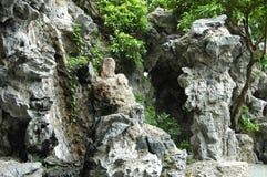 Chinese Rock Garden Royalty Free Stock Photo