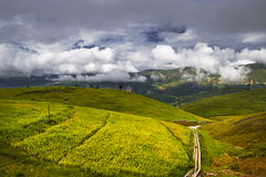 Chinese rural scenery Royalty Free Stock Photos