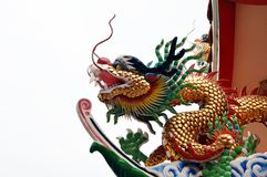 Chinese 's-draak Stock Fotografie