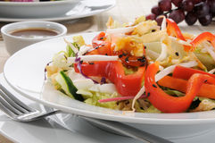 Chinese Salad. Close up of a Chinese salad with red peppers and bean sprouts Royalty Free Stock Photos