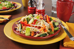 Chinese Salad. A delicious Chinese salad with fried won ton strips Stock Photos