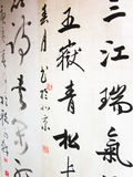 Chinese script / symbols / calligraphic text close-up Royalty Free Stock Photo
