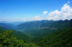 Chinese shennongjia primitive forest. This is a bird-eye view of the primitive forest located in shennongjia forestry district, Hubei Province, China, which is a Stock Images