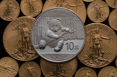 Chinese Silver Panda wins of US Gold Eagle Coins Royalty Free Stock Photo