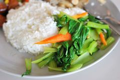 Chinese simple vegetable set meal Stock Photos