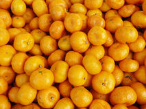 Chinese small oranges. The group of Chinese small oranges, very fresh fruit close up background Royalty Free Stock Photos