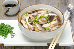 Chinese soup with chicken, shiitake, onions Stock Photo