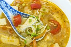 Chinese soup with tofu Royalty Free Stock Photo
