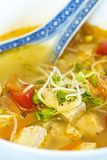 Chinese soup with tofu Royalty Free Stock Photos