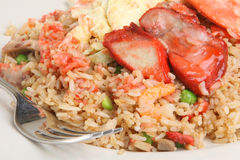 Chinese Special Fried Rice Takeaway Royalty Free Stock Photo