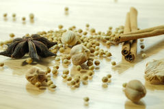 Chinese spices blend. Five kind of Chinese spices for cooking Stock Photography
