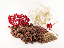 Chinese spices Royalty Free Stock Photo