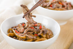 Chinese Spicy Beef and Black Bean Sauce Stock Images