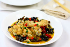 Chinese spicy chicken. Spicy chicken with mushroom and chili as metabolic booster Stock Image