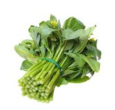 Chinese spinach Royalty Free Stock Photo
