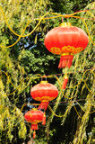 Chinese Spring Festival Stock Image
