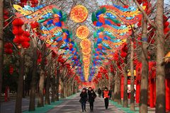 Chinese Spring Festival with dragon like Lantern royalty free stock image