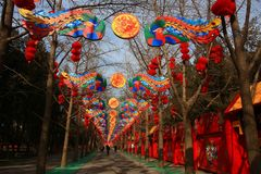 Chinese Spring Festival with dragon like Lantern stock photography