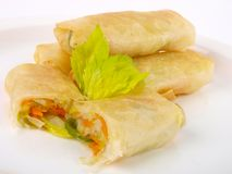 Chinese spring roll Royalty Free Stock Image
