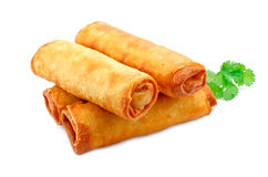 Chinese spring rolls Stock Images