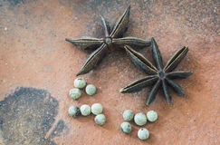 Chinese star anise and pepper. Closeup Chinese star anise and pepper in earthen plate Royalty Free Stock Image