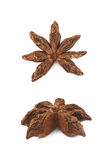 Chinese star anise seed isolated Royalty Free Stock Image