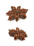 Chinese star anise seed isolated Stock Image