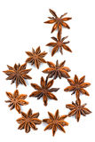 Chinese Star Anise, Star Anise, Star Aniseed, Badiane, Badian, Badian Khatai, Bunga Lawang, Thakolam. Stock Image