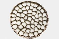 Chinese Sticky Cake On Threshing Basket Royalty Free Stock Photography