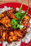 Chinese sticky pork sirloin roasted with a sweet and savory sauc. E served with boiled rice. Top view Royalty Free Stock Image