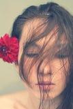 Chinese stijl stock fotografie