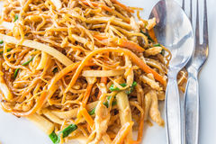Chinese stir fried chicken egg noodle. With bamboo shoot, carrot, and other vegetables Stock Image