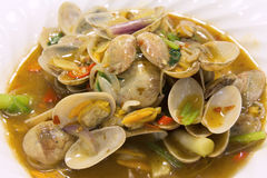 Chinese Stir Fry with Clams Closeup 2 Royalty Free Stock Photo
