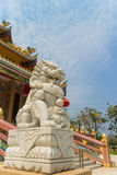 Chinese stone carving for lion statue Stock Images