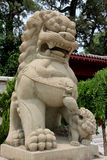 Chinese  Stone Lion Royalty Free Stock Photo