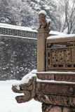 Chinese lion and dragon in winter royalty free stock photography
