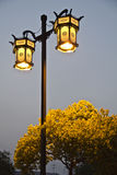 Chinese street lamp royalty free stock image