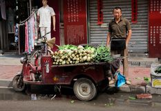 Chinese street seller Stock Images