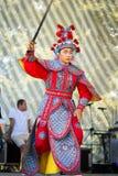 Chinese strijder met zwaard Stock Afbeeldingen
