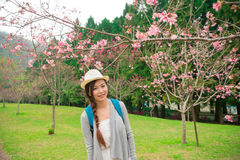 Chinese student in de kersenbloesem royalty-vrije stock afbeelding