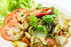 Chinese style Black pepper chilli chicken  on plate. Royalty Free Stock Photography