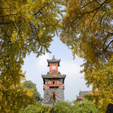 A chinese style Clock Tower. In Huaxi University of medicine stock images