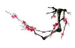 Chinese-style drawings, sketches, plum flower Stock Images