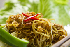 Chinese style fried noodles Royalty Free Stock Photo