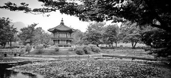 Chinese Style Pagoda. Chinese Architecture in a garden park in Seoul Stock Photo