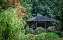 Chinese style pavilion with trees in a garden. Chinese style pavilion surrouned by trees in eraly autumn garden in china royalty free stock photo