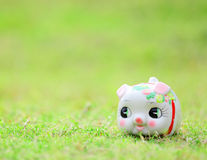 Chinese style piggy bank Royalty Free Stock Photography