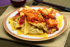 Chinese-style ravioli with fried tofu on white plate Royalty Free Stock Images