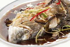Steamed fish. Chinese style steamed fish in soy sauce Stock Photos